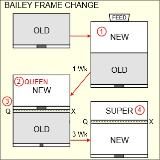 Bailey frame change