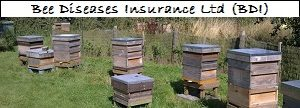 Bee Diseases Insurance Ltd (BDI)
