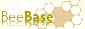 Bee Base